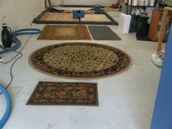 Area Rug Cleaning Mississauga Oakville